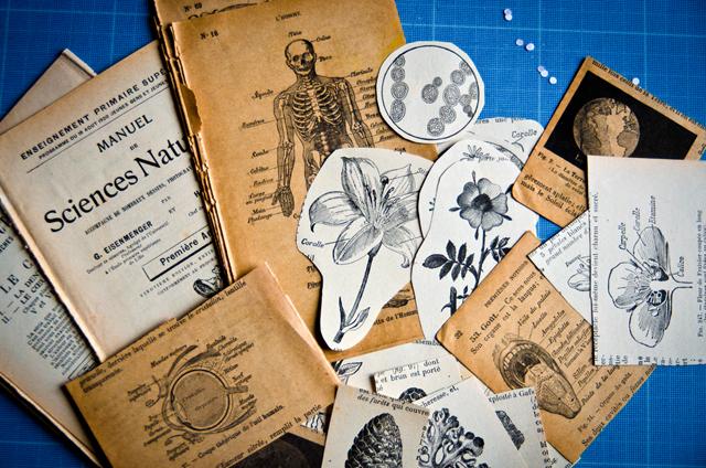 Atelier assuna magnets vintages